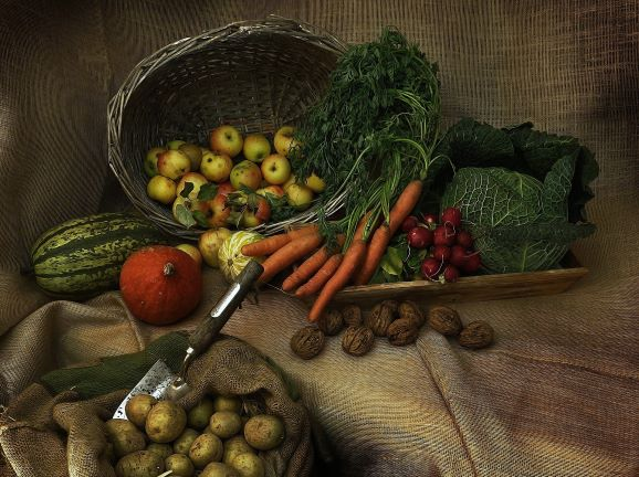 Fresh vegetables straight from the earth